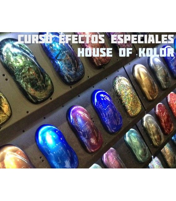 Kurs mit House of Kolor - 16. JUNI